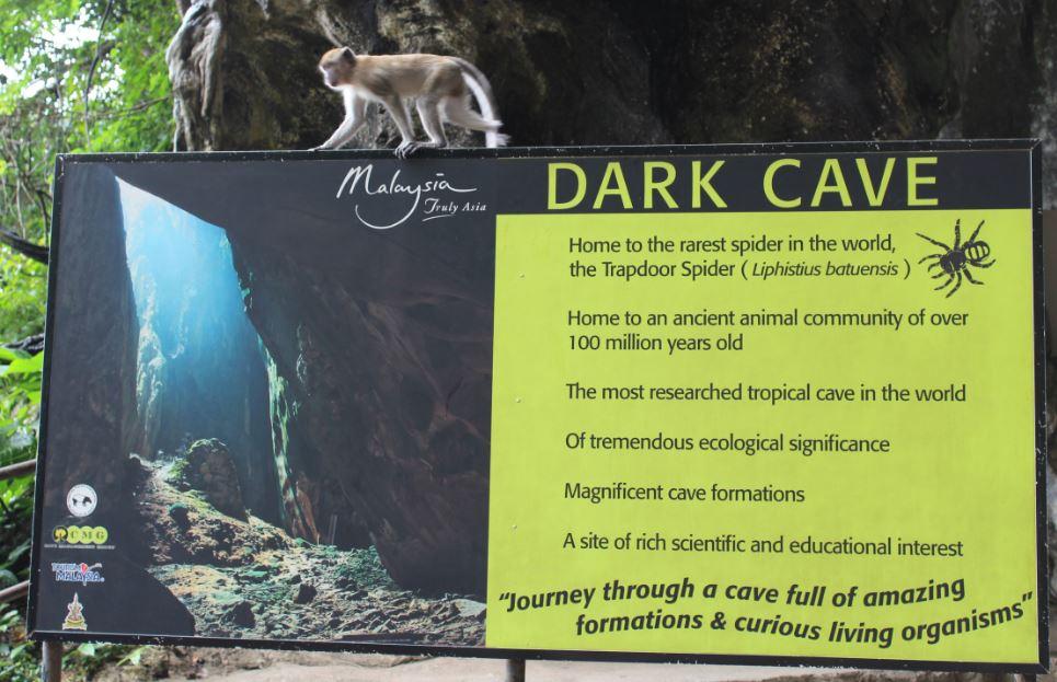 batu-cave4